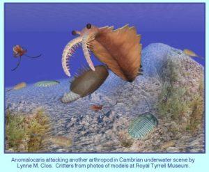 underwater fossil
